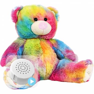 Rainbow Heartbeat Bear